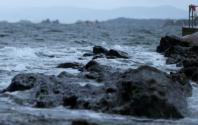 Rekordmånga agerar mot plasten i havet