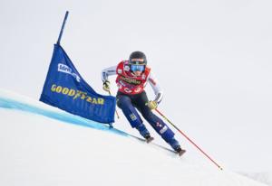 Alpint och skicross i gemensamt landslag